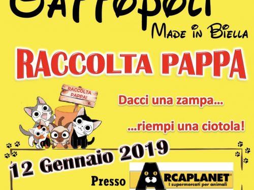 Raccolta pappa del 12/01/2019 – Arcaplanet Biella
